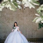 vestidos de novia corte princesa con encaje